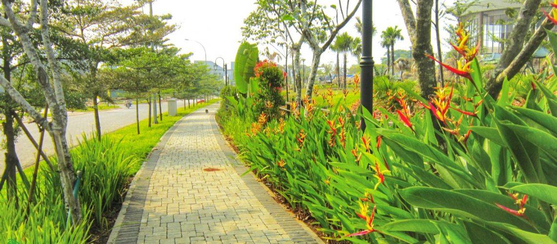 tanaman pengarah jalan bunga dan pohon.